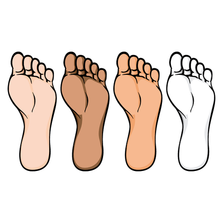 Illustration of body part, sole or sole of right foot, ethnic. Ideal for catalogs, information and institutional material