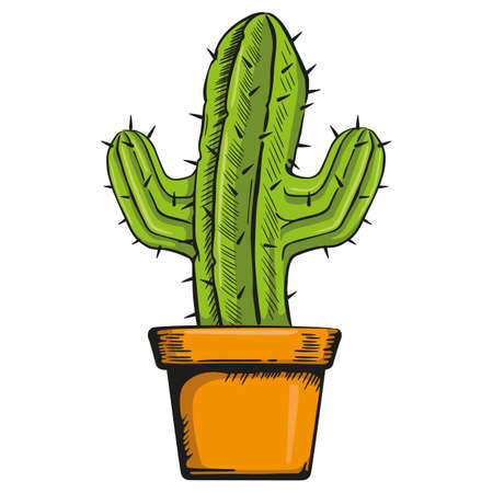 Illustration vase with a cactus in color. Ideal for botanical and gardening materials