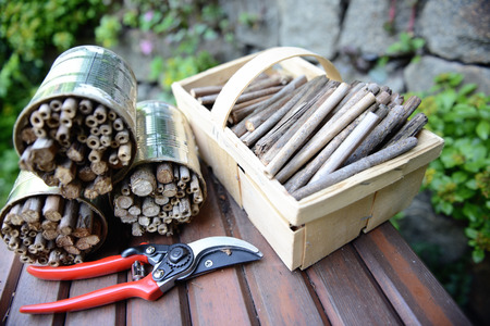 utensiles to build in insect shelter for wild bees and wasps.