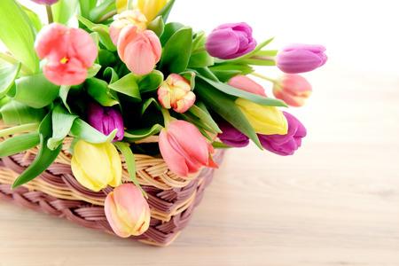 tulipan: Bukiet tulipanów na koszu