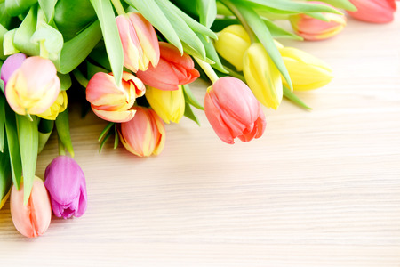 floral arrangement: Bunch of tulips on white wooden background