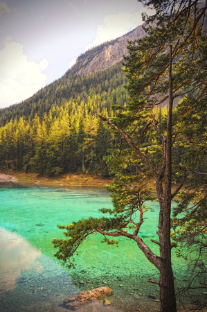 cross processed: green lake in styria tragoess austria. cross processed Stock Photo