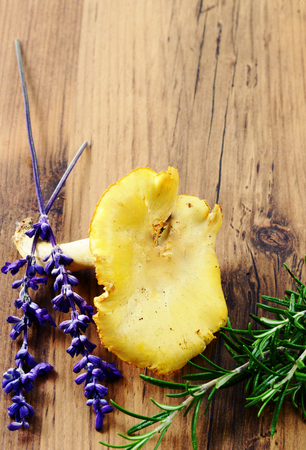 golden chanterelle: golden chanterelle mushrooms with sage flower, lavender Stock Photo