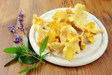 golden chanterelle: golden chanterelle mushrooms with sage