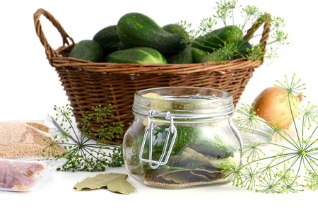 peper: homemade cucumbers in jar glass with herbs like dill, laurel leaves, chili peper and onions.