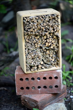 insect hotel made of bamboo sticks in a garden. wild bee shelter. Stock Photo