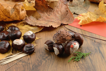 thinker chestnut figures like turtle in autumn time with thooth sticks.