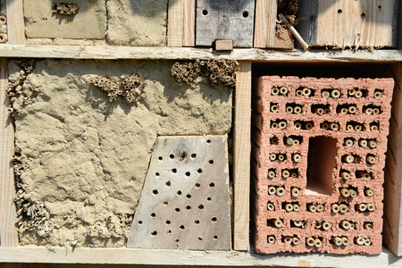 insect shelter for wild bees. insect house.