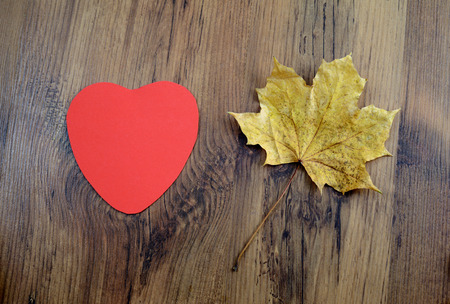 love autumn dectoration with paper heart and maple leave on wooden background. tinkering with autumn items.