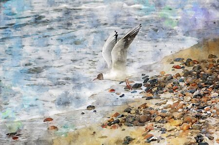 digital illustration of seagull flying over the baltic sea waves looking for food. Water colors.
