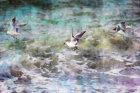 digital illustration of Three seagulls flying over the baltic sea waves looking for food. Water colors.