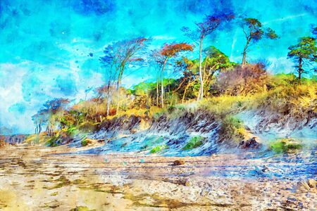 Digital illustration of Weststrand beach at darss peninsula at Germany baltic sea coast. beech tree forest. water color.