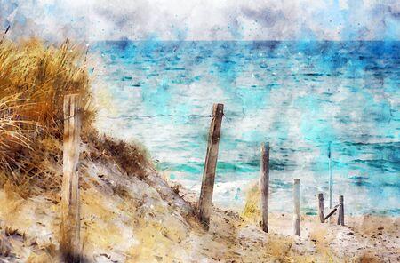 Digital illustration of baltic sea coast landscape. path leading to beach. Darss peninsula in Germany. Watercolor paint.