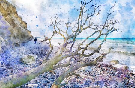 Digital illustration of Darss peninsula cliff and people walking along at flint stone rock on beach at village Ahrenshoop in Mecklenburg-Vorpommern Germany. Driftwood on beach. Water color. 스톡 콘텐츠