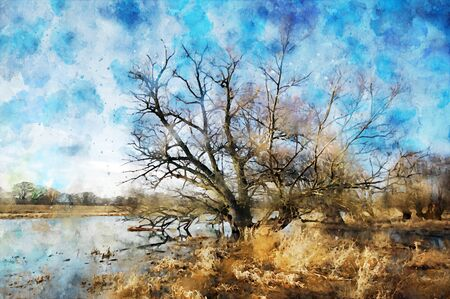 Watercolor painting of old Willow tree on Havel river in Havelland Germany. Autumn time.