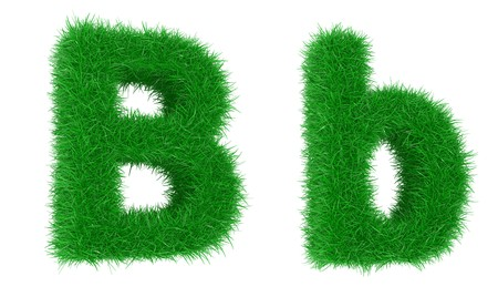 caulis: High resolution grass font isolated on white background