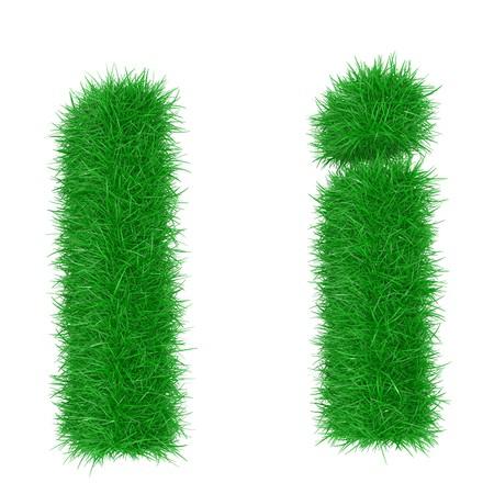 Polices d'herbe haute résolution isolé sur fond blanc Banque d'images - 7050254