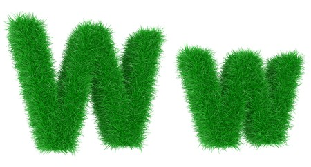 High resolution grass font isolated on white background photo