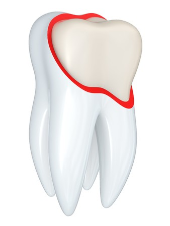 dental research: Tooth structure isolated on a white bacground