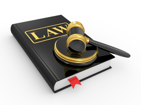 infringement: legal gavel and law book on a white background
