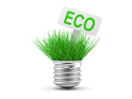 socle: Green grass growing up through light bulb, green power, ecology concept