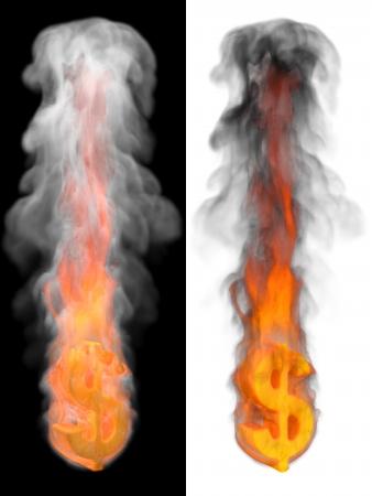 burning money: Fire dollar sign on black and white background