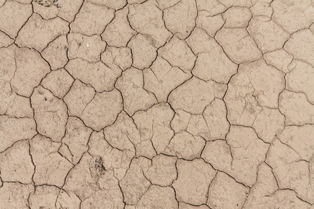 lifeless: Сracked earth. Lifeless space under the hot sun.