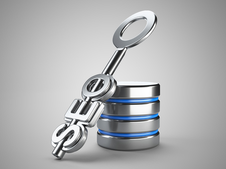 secure backup: Database search optimization concept. Silver key with word seo on grey background. 3d render