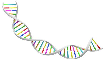 Blanc brin d'ADN spirale. Isolé sur une image de fond blanc. illustration 3D pour la conception. Banque d'images - 63109164