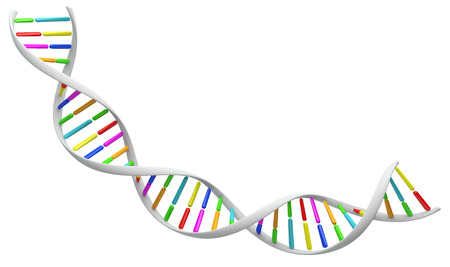 White spiral DNA strand. Isolated on a white background image. 3D illustration for design.