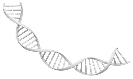 Witte spiraal DNA-streng. Geïsoleerde beeld op een witte achtergrond. 3D illustratie voor het ontwerp.