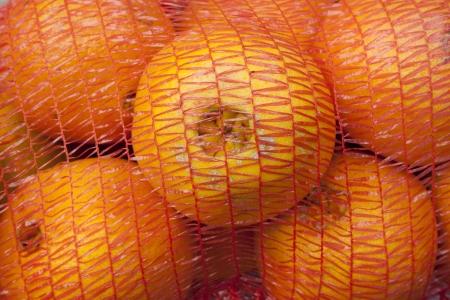 A closeup of a net plastic sack with orange fruits photo
