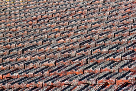 unkept: A closeup look at a red clay tiled roof covered in lichen