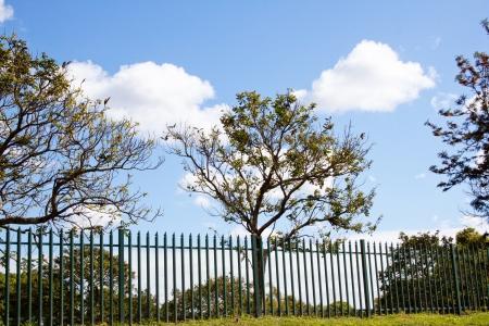 緑の柵セキュリティ フェンス ブレンド自然環境の美しい景色