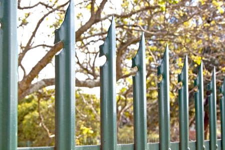 Closeup of green steel spiked palisade security fence against tree background photo