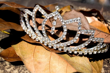 diamonds in the rough concept with tiara lying on top of autumn leaves Stock Photo
