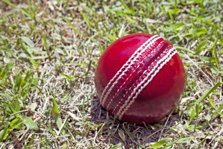 patchy: bright red cricket ball on patchy grass lawn