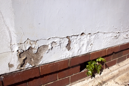 damp: cracking and peeling paint due to rising damp Stock Photo