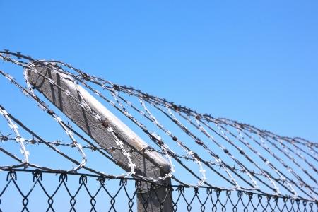 razor wire: coiled razor wire fence against blue skyline