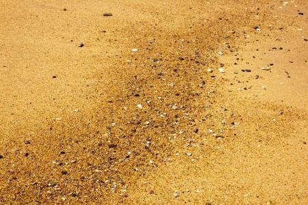 linea de flotaci�n: primer plano de la l�nea de flotaci�n conchas y piedras que ofrecen