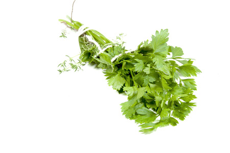 herbs de provence: studio shot of traditional bouquet garni comprising parsley thyme and bay leaf Stock Photo