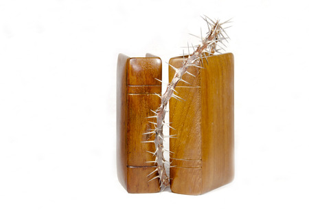 two bibles with wooden covers and branch of christ's-thorn