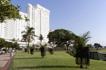 beachfront: hotel overlooking trees and lawn on Durban beachfront