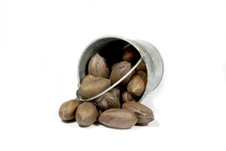 overturned: overturned bucket spilling freshly picked pecan nuts