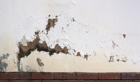 damp: desquamazione vernice sul muro esterno indicante umidit� di risalita