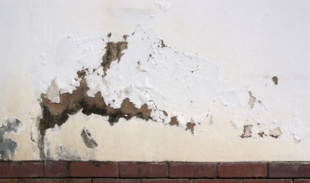 dampness: flaking paint on exterior wall indicating rising damp