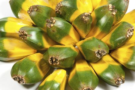 pandanus: bright green and yellow fruit of the pandanas palm Stock Photo