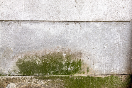 green mold indicating damp on precast cement wall