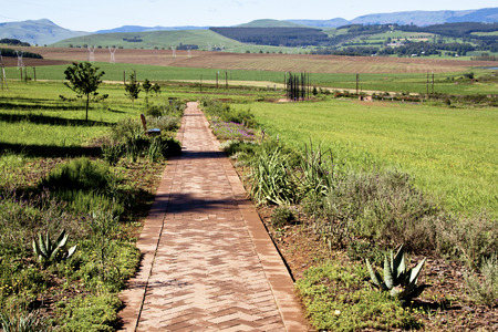howick: Howick, KwaZulu-Natal, South Africa - 30 December 2013: Long Paved Walkway leads to Metal sculpture of Nelson Mandela at the site where he was arrested in 1962 by the apartheid government.