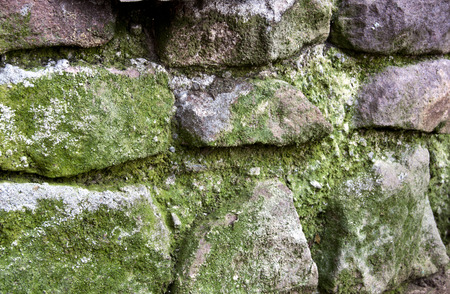 stone retaining wall covered in green moss photo